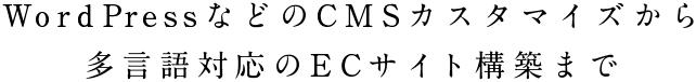WordPressなどのCMSカスタマイズから多言語対応のECサイト構築まで